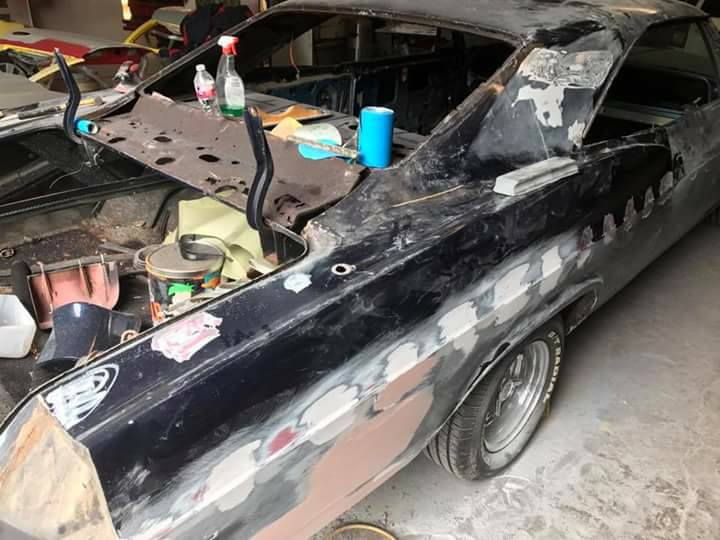 impala1
